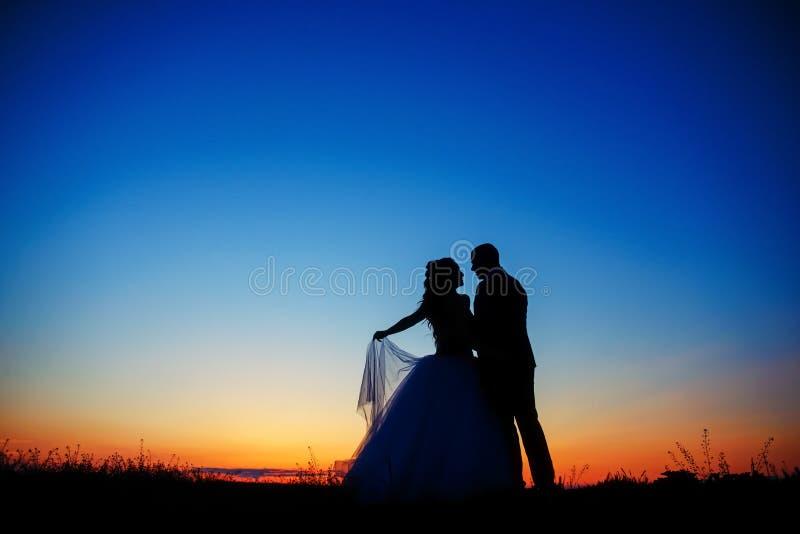 Coppie di nozze nel campo Sposa e sposo insieme fotografie stock libere da diritti