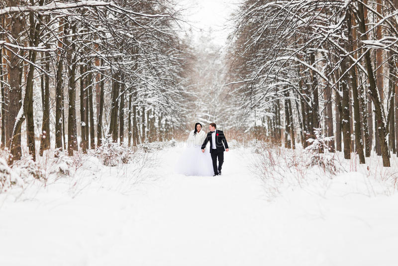 Coppie di nozze nell'inverno fotografie stock libere da diritti