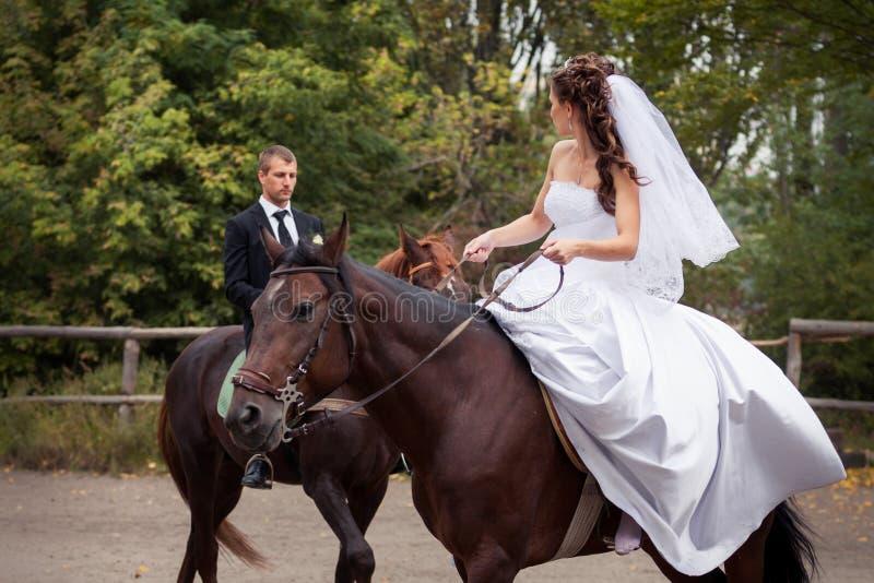 Coppie di nozze sui cavalli fotografia stock