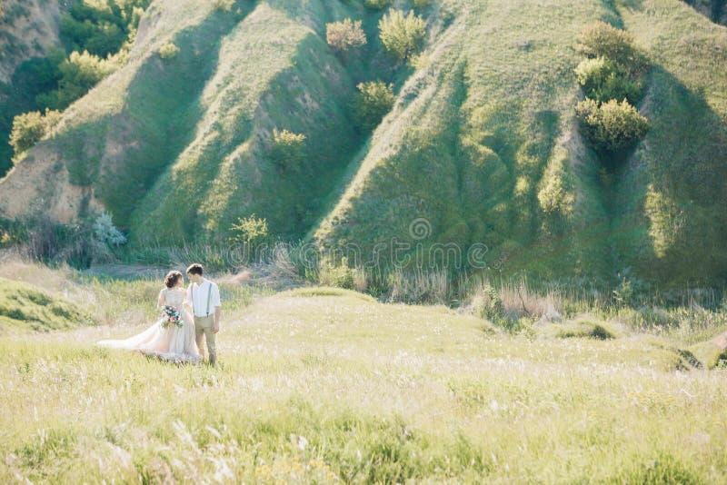 Coppie di nozze sulla natura sposa e sposo che abbracciano alle nozze fotografie stock libere da diritti