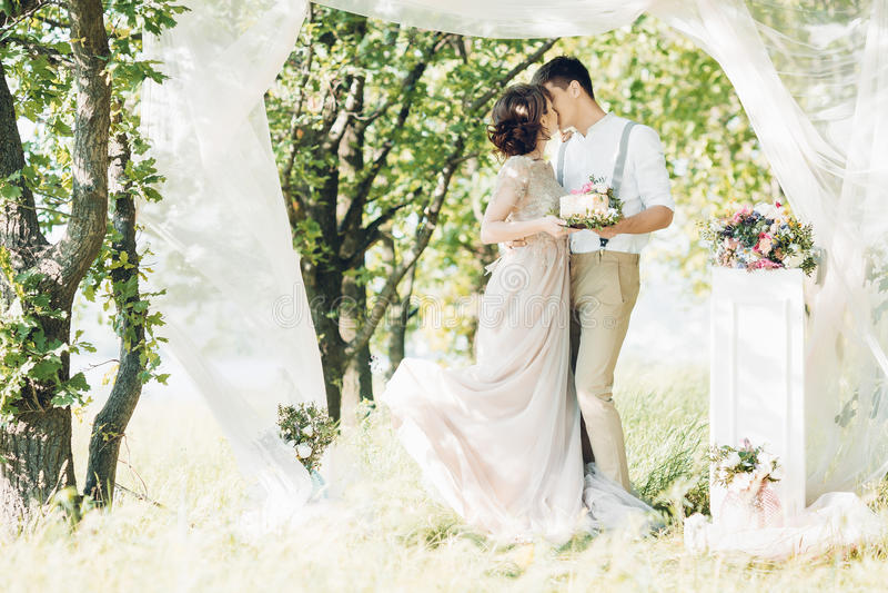 Coppie di nozze sulla natura sposa e sposo con il dolce a nozze immagine stock libera da diritti