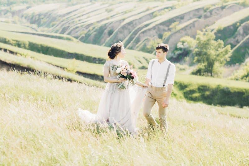Coppie di nozze sulla natura Sposa e sposo Fotografia di arte immagine stock libera da diritti