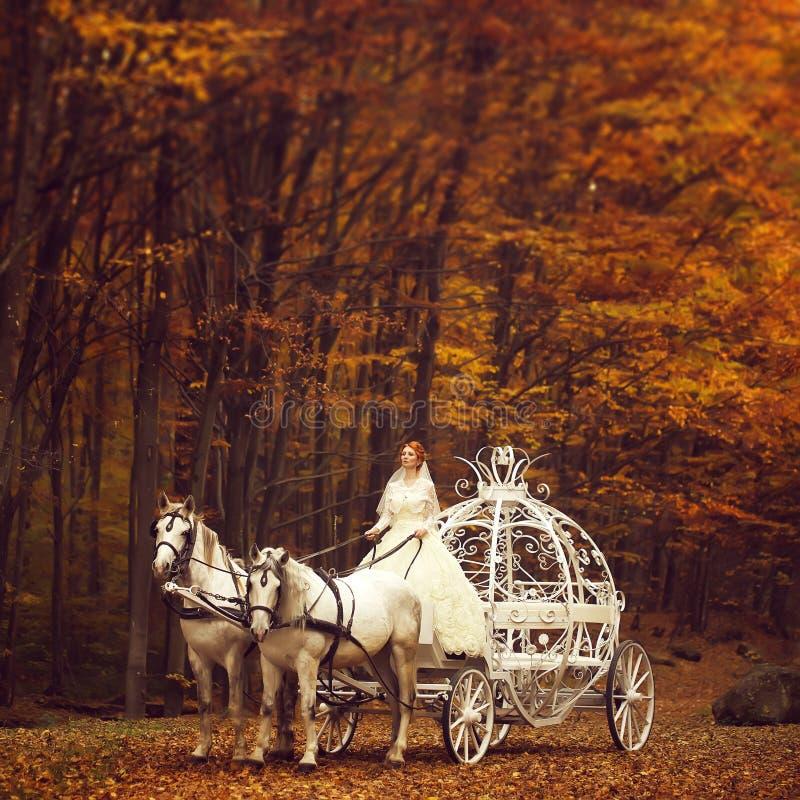 Coppie di nozze in trasporto fotografia stock