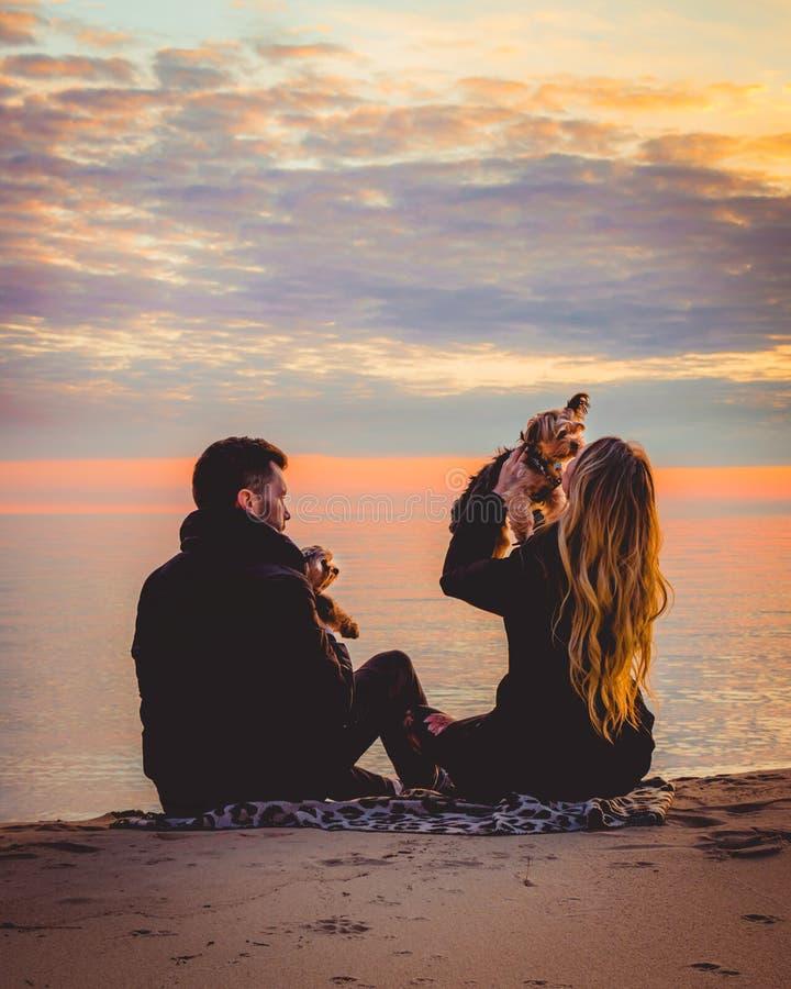 Coppie di tramonto di lago Michigan con il viaggio di stile di vita dei cuccioli fotografia stock libera da diritti