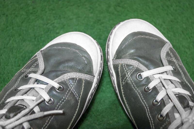 Coppie Dusty Gray Leather Gumshoes Sneakers con i pizzi e le sogliole bianchi su fondo verde Vista dall'alto in basso Concetto at fotografia stock