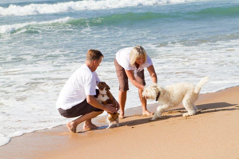 Coppie ed animale domestico fotografia stock libera da diritti
