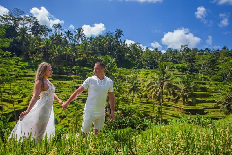 Coppie felici che viaggiano a Bali, terrazzi del riso di Tegalalang, Ubud fotografia stock