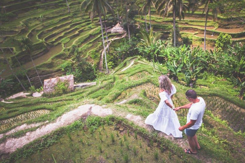 Coppie felici che viaggiano a Bali, terrazzi del riso di Tegalalang, Ubud immagini stock
