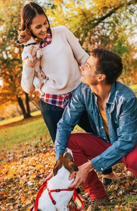Coppie felici con i cani che giocano all'aperto nel parco di autunno immagini stock libere da diritti