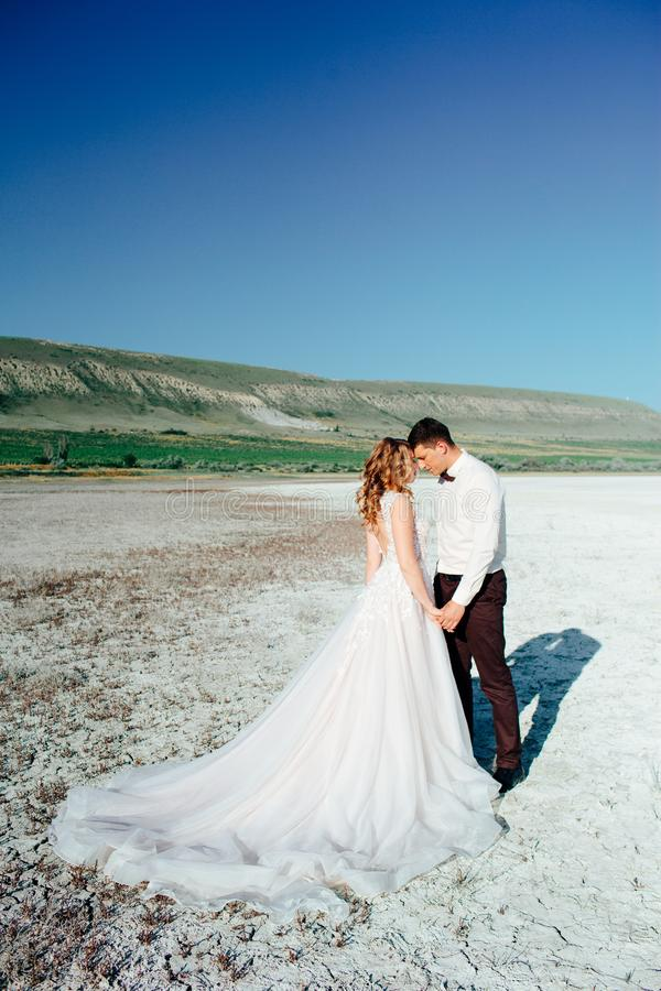 Coppie felici del newlywed Bei sposa e sposo in un vestito immagine stock