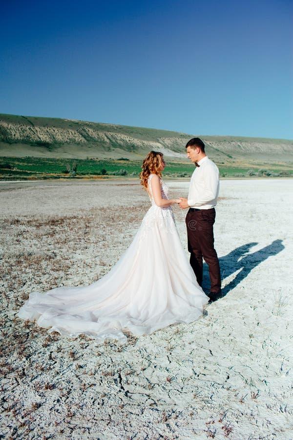 Coppie felici del newlywed Bei sposa e sposo in un vestito fotografia stock libera da diritti