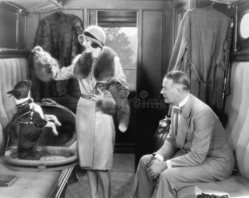 Coppie insieme in un treno e nell'alimentazione del cane (tutte le persone rappresentate non sono vivente più lungo e nessuna pro fotografia stock libera da diritti