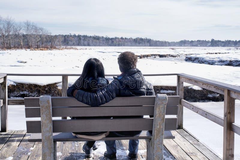 Coppie interrazziali nel paesaggio di inverno di Maine fotografia stock libera da diritti