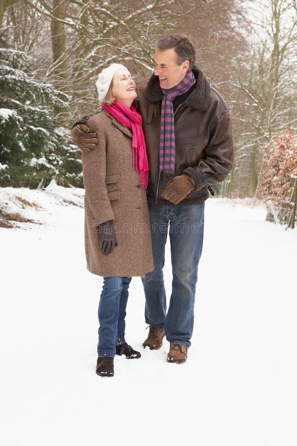 Coppie maggiori che camminano attraverso il terreno boscoso dello Snowy fotografie stock