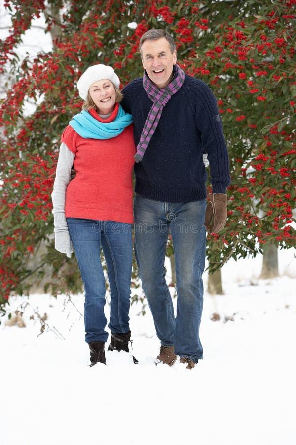Coppie maggiori che camminano attraverso il terreno boscoso dello Snowy immagini stock libere da diritti