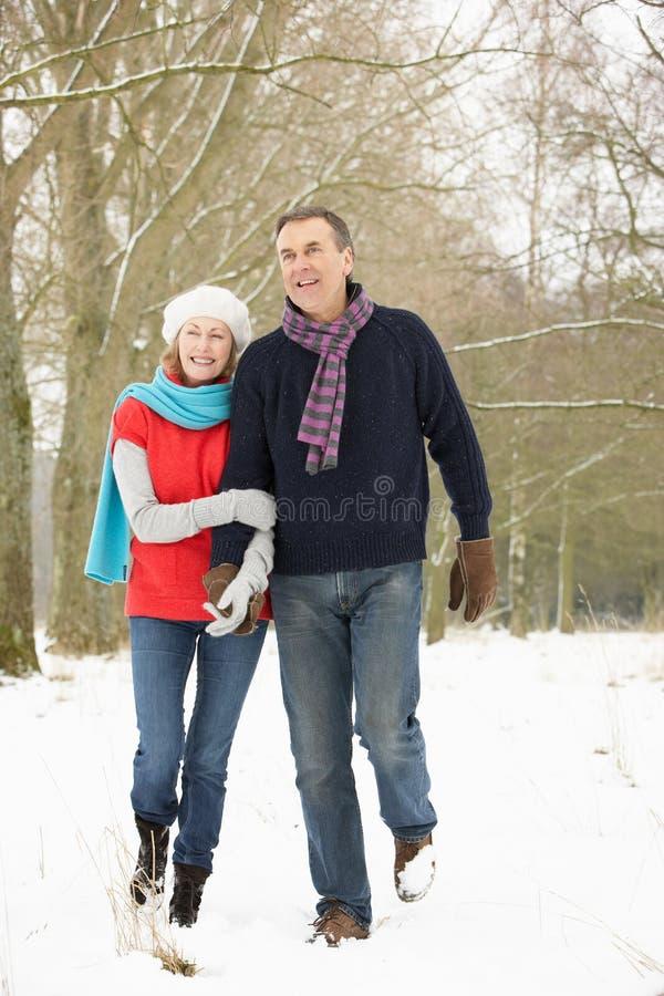Coppie maggiori che camminano attraverso il terreno boscoso dello Snowy fotografia stock libera da diritti