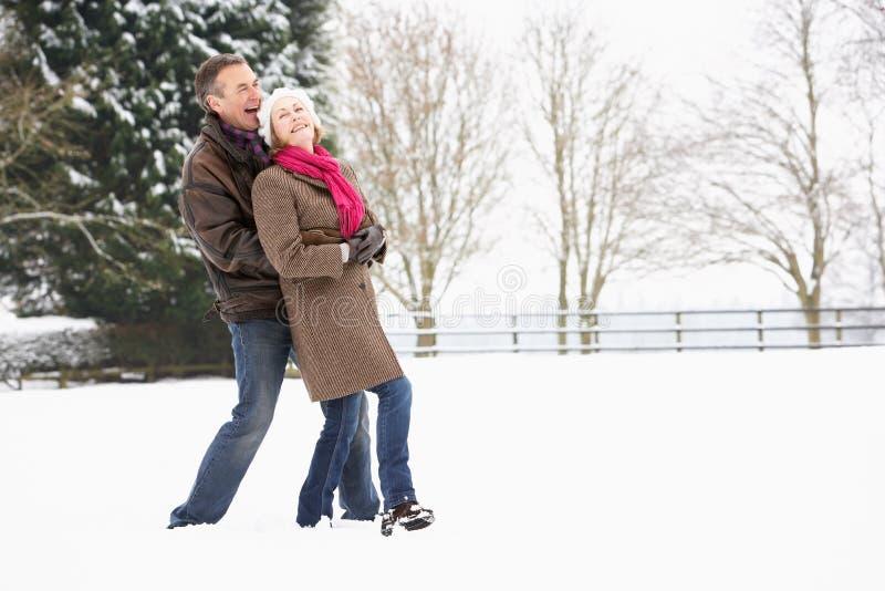Coppie maggiori che camminano nel paesaggio dello Snowy fotografie stock libere da diritti