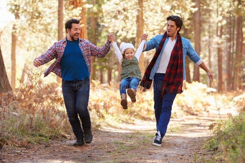 Coppie maschii gay con la figlia che cammina attraverso il terreno boscoso di caduta immagine stock libera da diritti