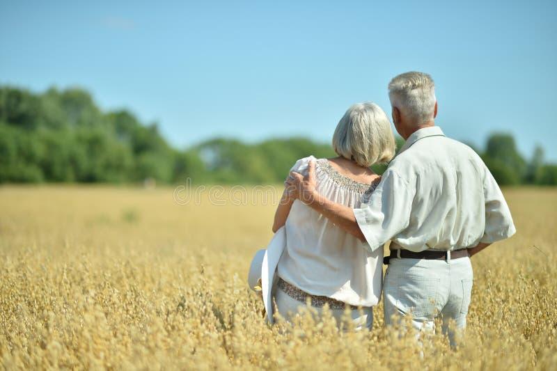 Coppie mature amorose nel campo fotografie stock libere da diritti
