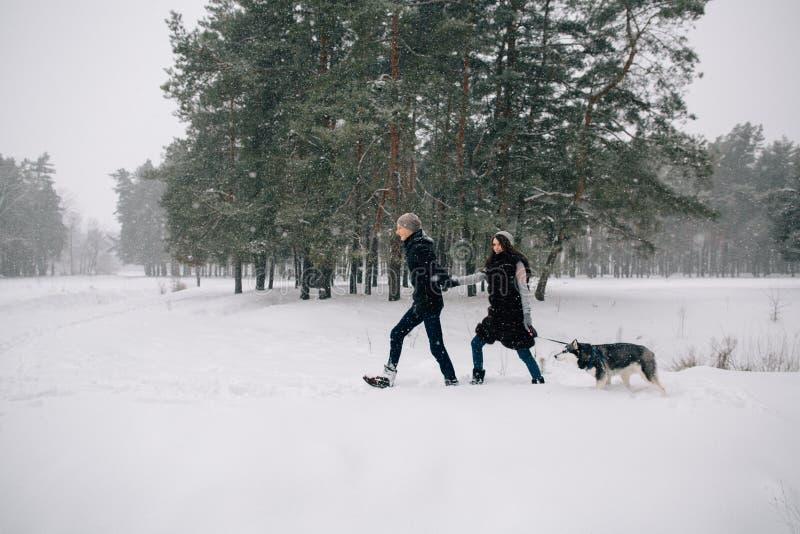 Coppie nell'amore che cammina con il loro cane del husky fotografia stock libera da diritti