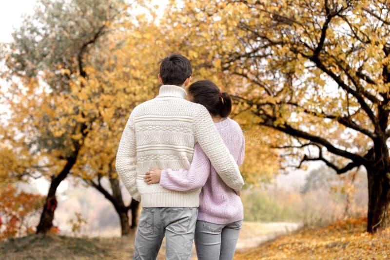 Coppie nell'amore nelle foglie di autunno immagini stock