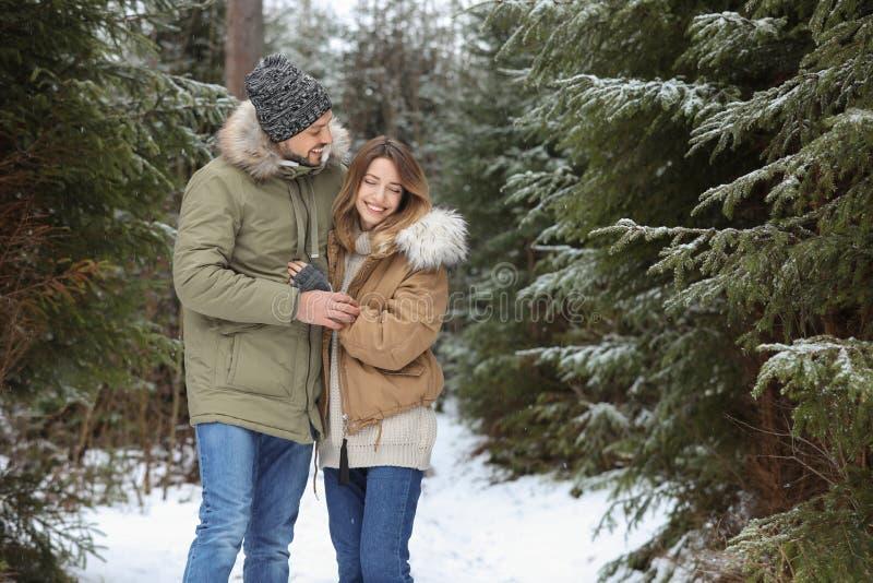 Coppie nella foresta della conifera il giorno nevoso, spazio per testo immagini stock