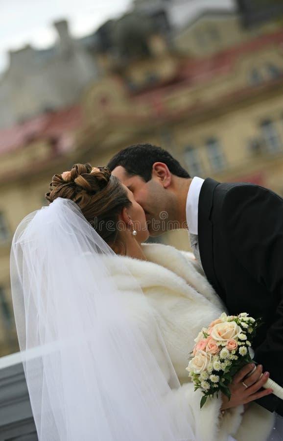 coppie Nuovo-sposate fotografia stock libera da diritti