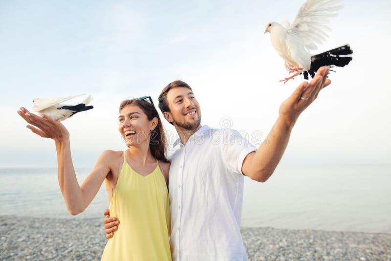 Coppie in parco che gioca con i piccioni locali, divertiresi dei turisti immagini stock