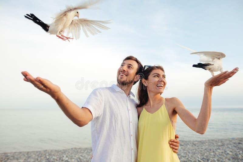 Coppie in parco che gioca con i piccioni locali, divertiresi dei turisti fotografie stock libere da diritti