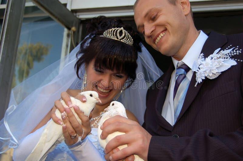 Coppie recentemente wedded con le colombe immagini stock libere da diritti