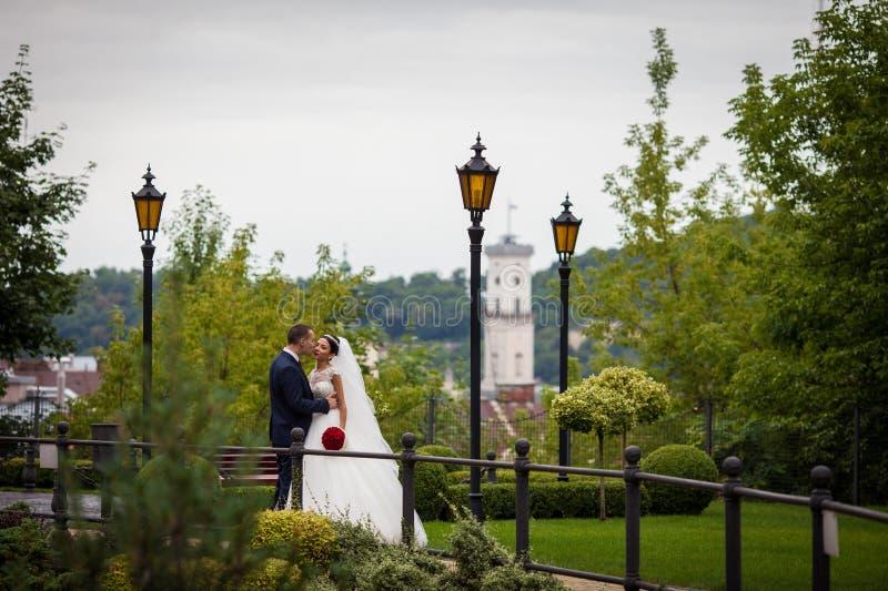 Coppie romantiche della persona appena sposata, sposo che bacia sposa in parco europeo w immagini stock libere da diritti