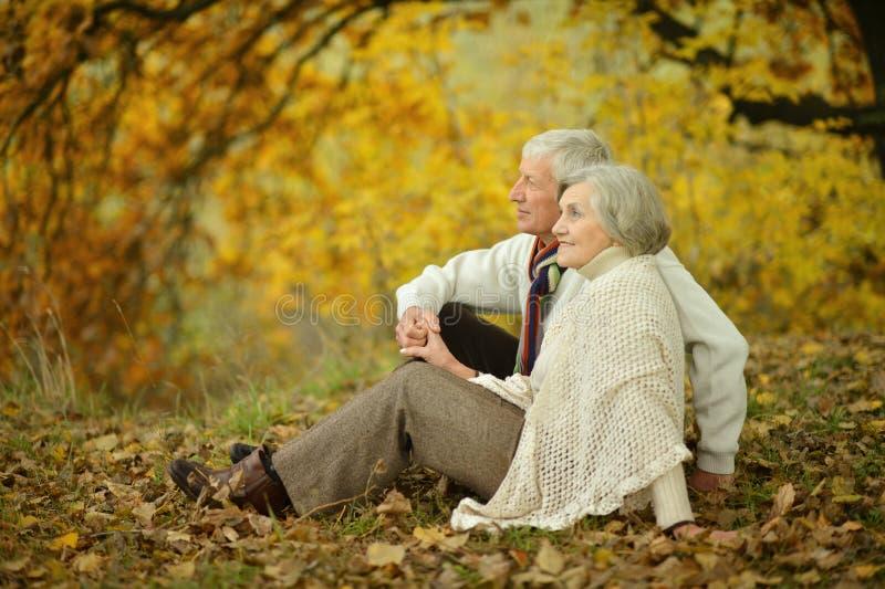 Coppie senior in autunno fotografia stock libera da diritti
