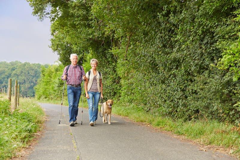 Coppie senior che camminano il cane immagini stock libere da diritti