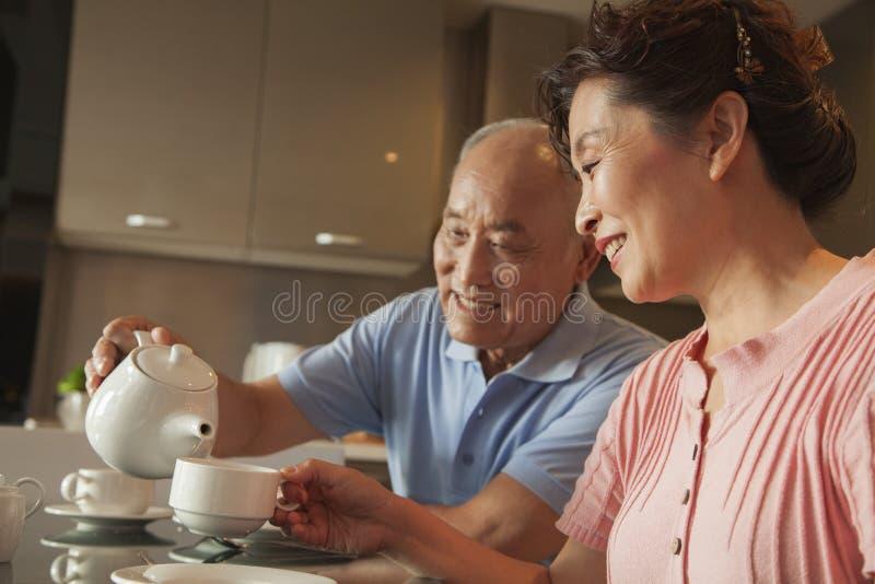 Coppie senior che dividono tè immagini stock