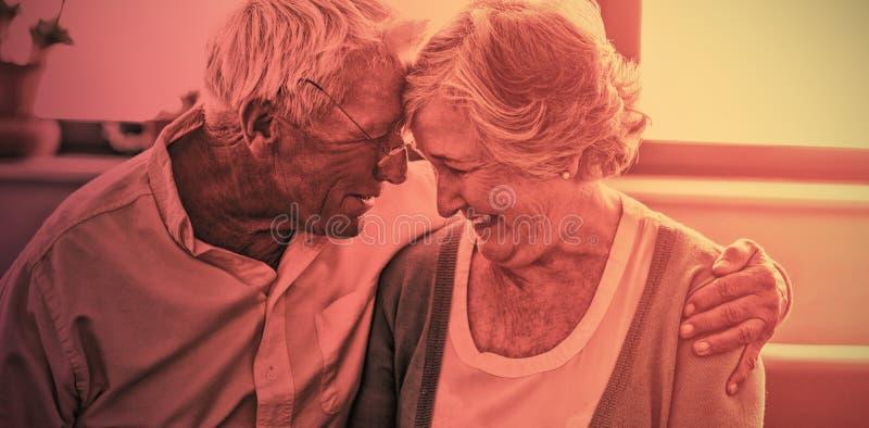 Coppie senior che si abbracciano immagini stock libere da diritti