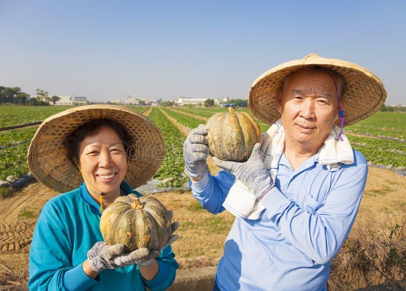 coppie senior che stanno davanti al terreno coltivabile immagini stock libere da diritti