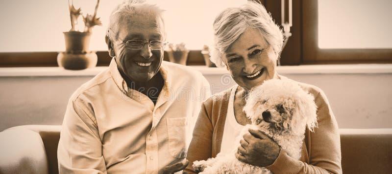 Coppie senior che tengono un cane immagini stock
