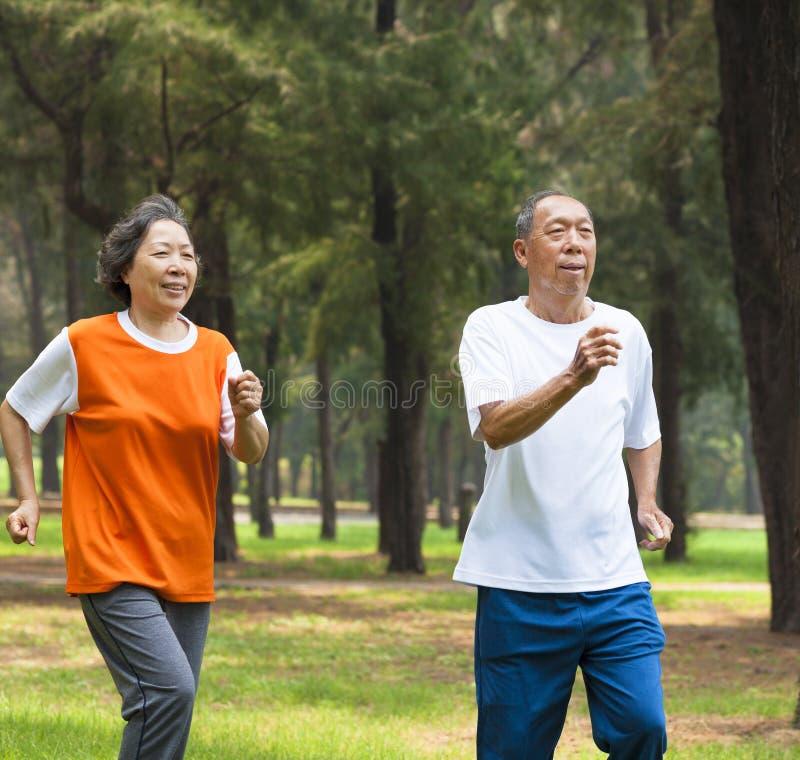 Coppie senior felici che pareggiano insieme nel parco fotografie stock libere da diritti
