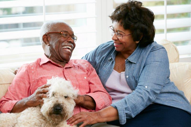 Coppie senior felici che si siedono sul sofà con il cane immagini stock libere da diritti
