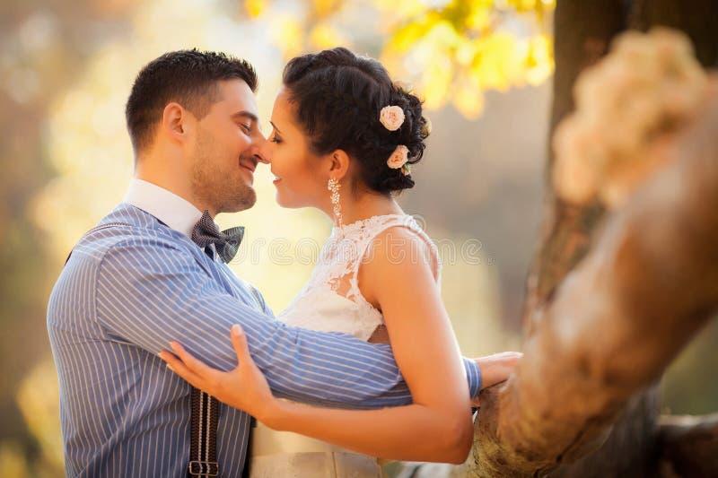 Coppie sorridenti che abbracciano baciare nel parco di autunno Sposa e sposo felici in foresta, all'aperto fotografia stock