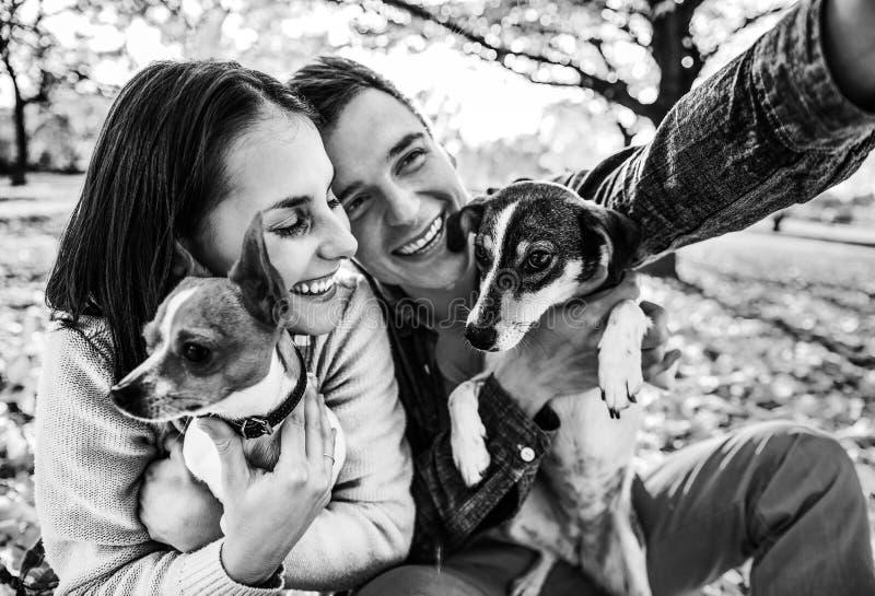 Coppie sorridenti con i cani all'aperto nel parco di autunno che fa selfie fotografia stock