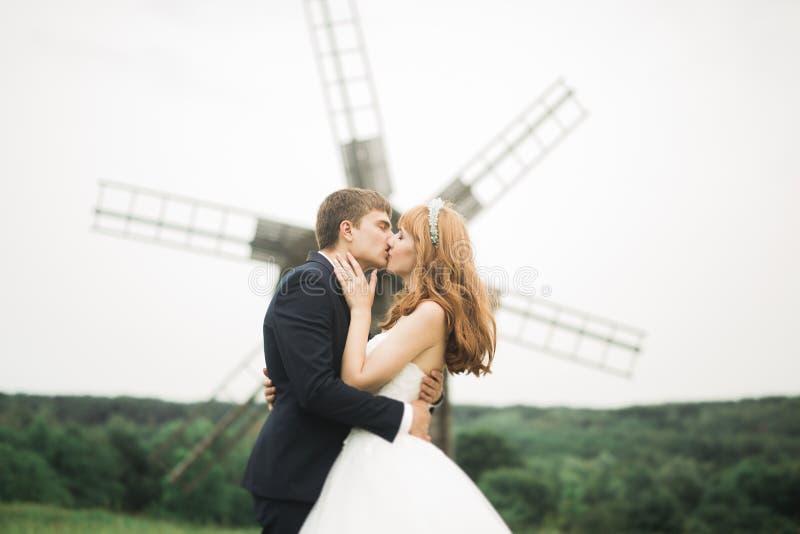 Coppie, sposa adorabile e sposo di nozze posanti nel campo durante il tramonto immagini stock libere da diritti
