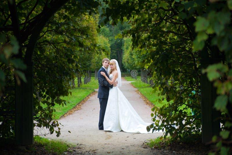 coppie sposate recentemente immagine stock
