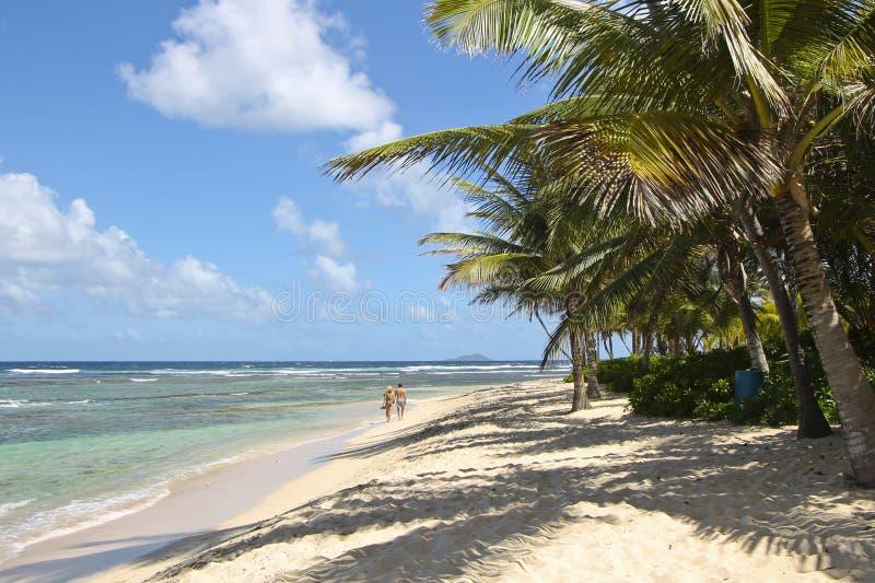 Coppie sulla spiaggia sulla st Croix immagine stock