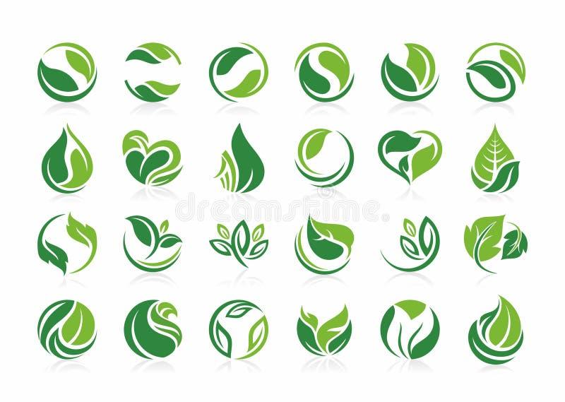 Copre di foglie la natura di logo, l'agricoltura, organica, la pianta, bio-, eco, progetta l'insieme verde dell'icona della fogli illustrazione vettoriale
