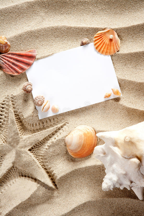 Download Copyspace Blank Space Summer Starfish Sand Shells Stock Photo - Image: 20671284