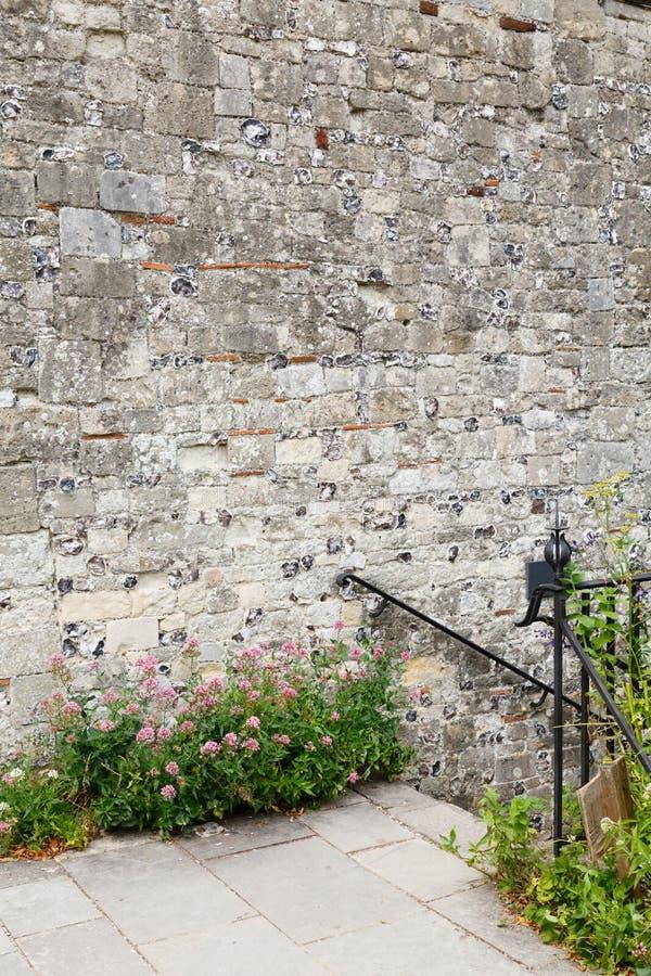 Copyspace della parete del giardino fotografia stock