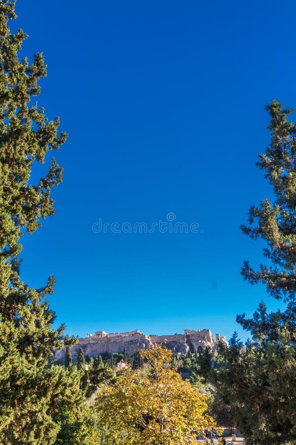 Copyspace, ritratto con l'acropoli in basso incorniciata dagli alberi fotografie stock