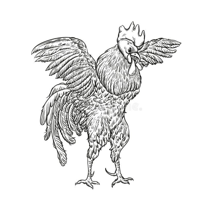 Coq Illustration de coq dans le style de gravure de vintage Label grunge, autocollant pour les fermes et representation de fabric illustration stock