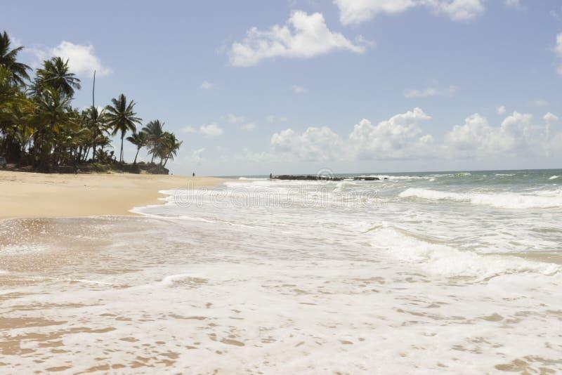 Coqueirinho strand, Conde PB, Brasilien royaltyfria foton